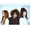 Midnight Larks image