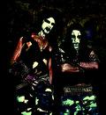 Mørkevind image