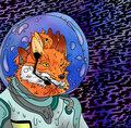 Fox Vibes image