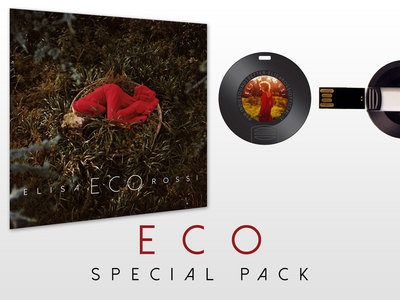 Eco Special Pack: 1 cd + 1 VinylUSB Drive main photo