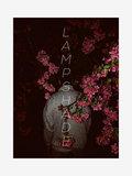 lamp shade image