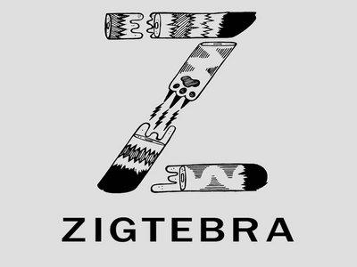 Zigtebra Z T-Shirt main photo