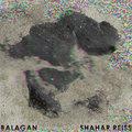Shahar Reiss image