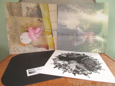 Distro Item / Golden Braid LP main photo