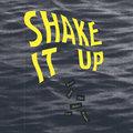 Shake It Up image