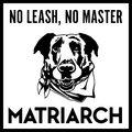 Matriarch image
