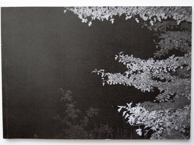 Spectres : Photographs 2008-2013 main photo