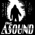 The Asound image