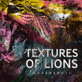 Textures Of Lions image