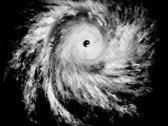 """Cyclone"" 2014 era shirt (Now discontinued!) photo"