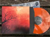 "VINYL  'Aeons'  debut album on 12"" photo"