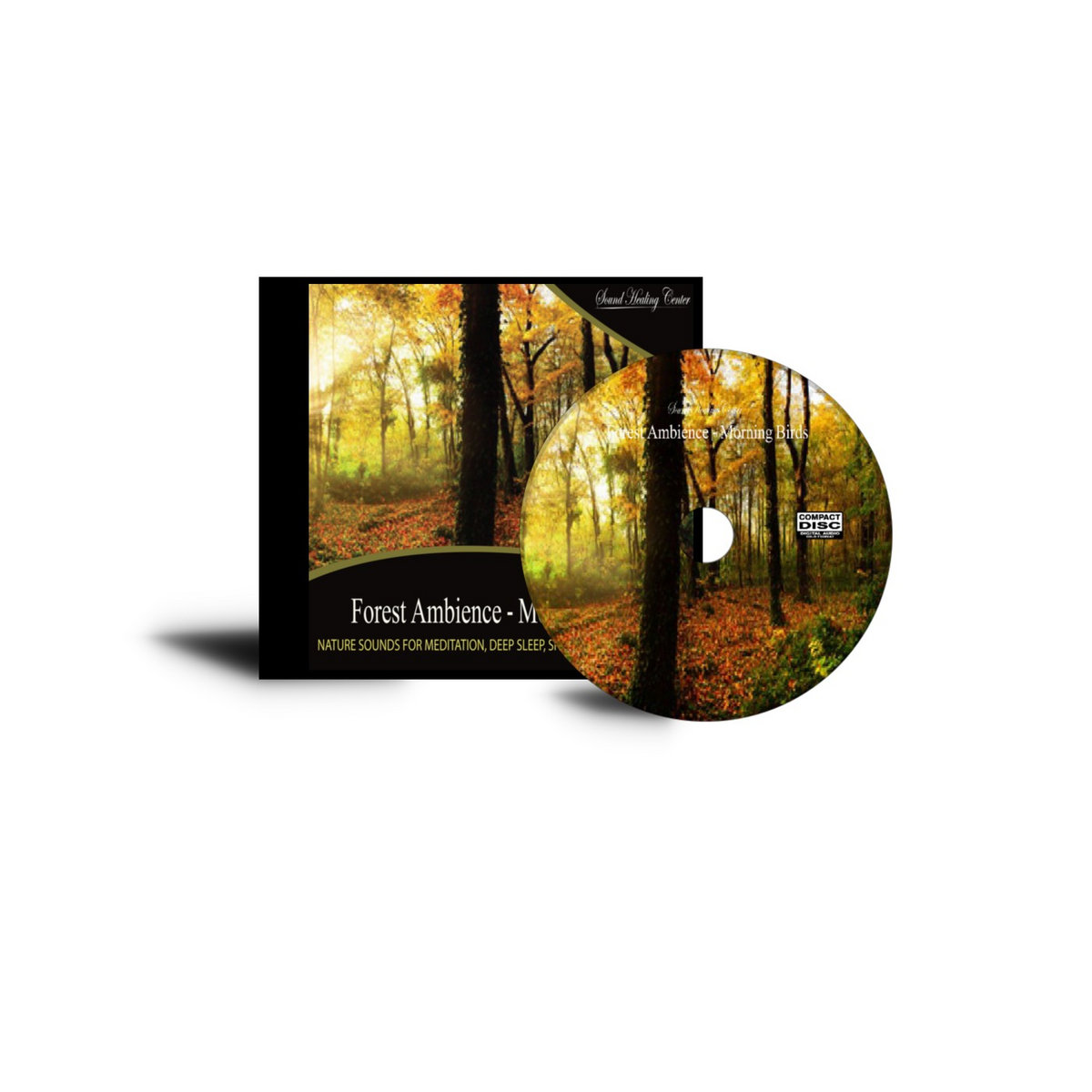 Forest Ambience - Morning Birds: Nature Sounds for