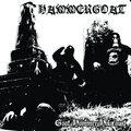 HAMMERGOAT image