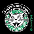 BogZH Celtic Cats ! image