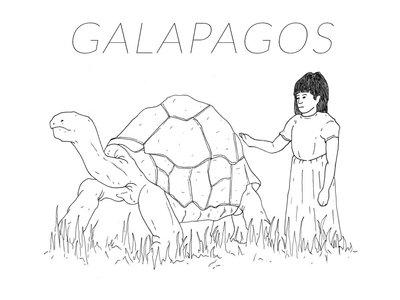 Galapagos - Turtle T - Shirt main photo