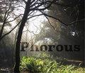 Phorous image