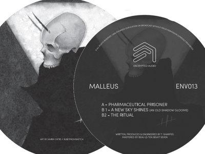 ENV013 - Malleus main photo