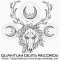 Quantum Digits Recordings image