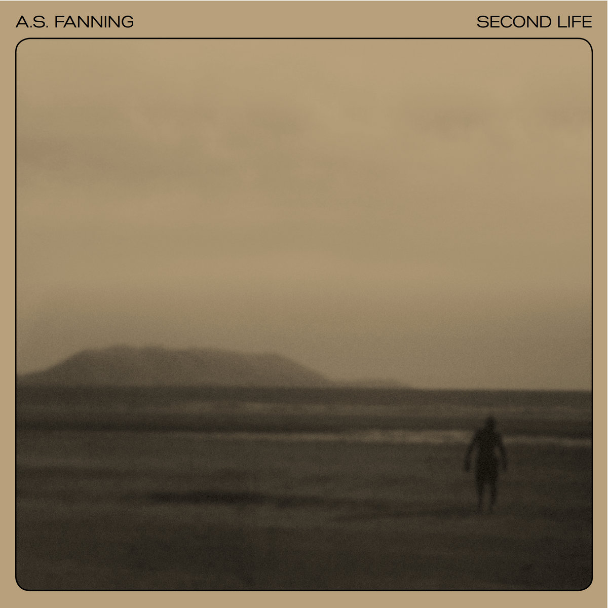 Second Life' | A S  Fanning