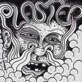 Plaster image