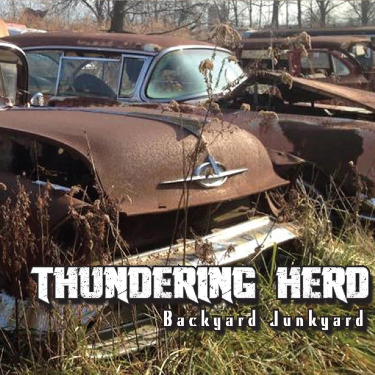 backyard junkyard thundering herd