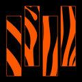Orange Zebra image