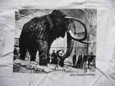 Aurora Borealis mammoth T shirt main photo
