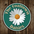 The Coaltown Daisies image