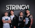 STRINGY! image