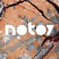 notoy image