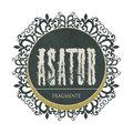 Asator image