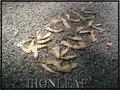 IronLeaf image