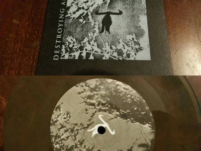 DESTROYING ANGEL Let the Season Find You 7 inch vinyl main photo
