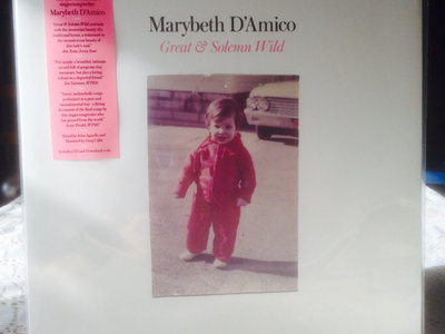 "Distro Item / Marybeth D'Amico ""Great & Solemn Wild"" LP main photo"