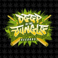 Deep In The Jungle Records image