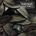Black Palate image