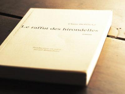 """""""Le raffut des hirondelles"""" / Roman / Claire Bonnaz main photo"""