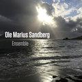 Ole Marius Sandberg image