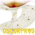 DSCORPR8S image