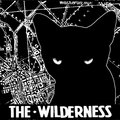 The Wilderness image