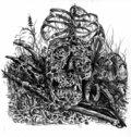 Ossuarium image