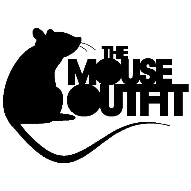 Bring Me Down (feat  Ellis Meade) | The Mouse Outfit