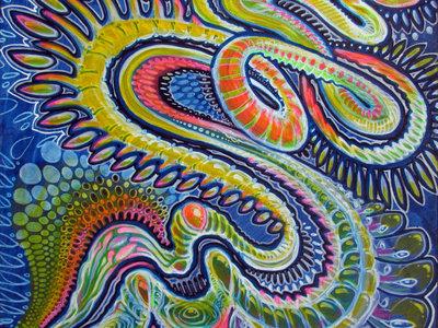 Rainbow Worm main photo
