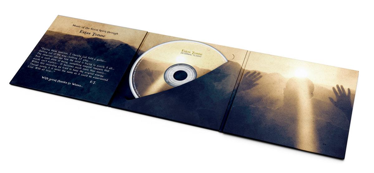Internal Flight 2013 (guitar version) | Estas Tonne