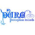 Pure Perception Records image