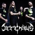 Serenius image