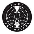 Paul The Walrus image
