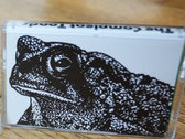 THE COMPLEAT TOADS (Cassette) photo