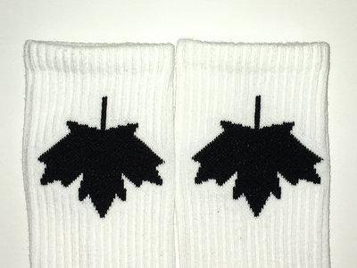 BAS-Canada blanc - logo noir main photo