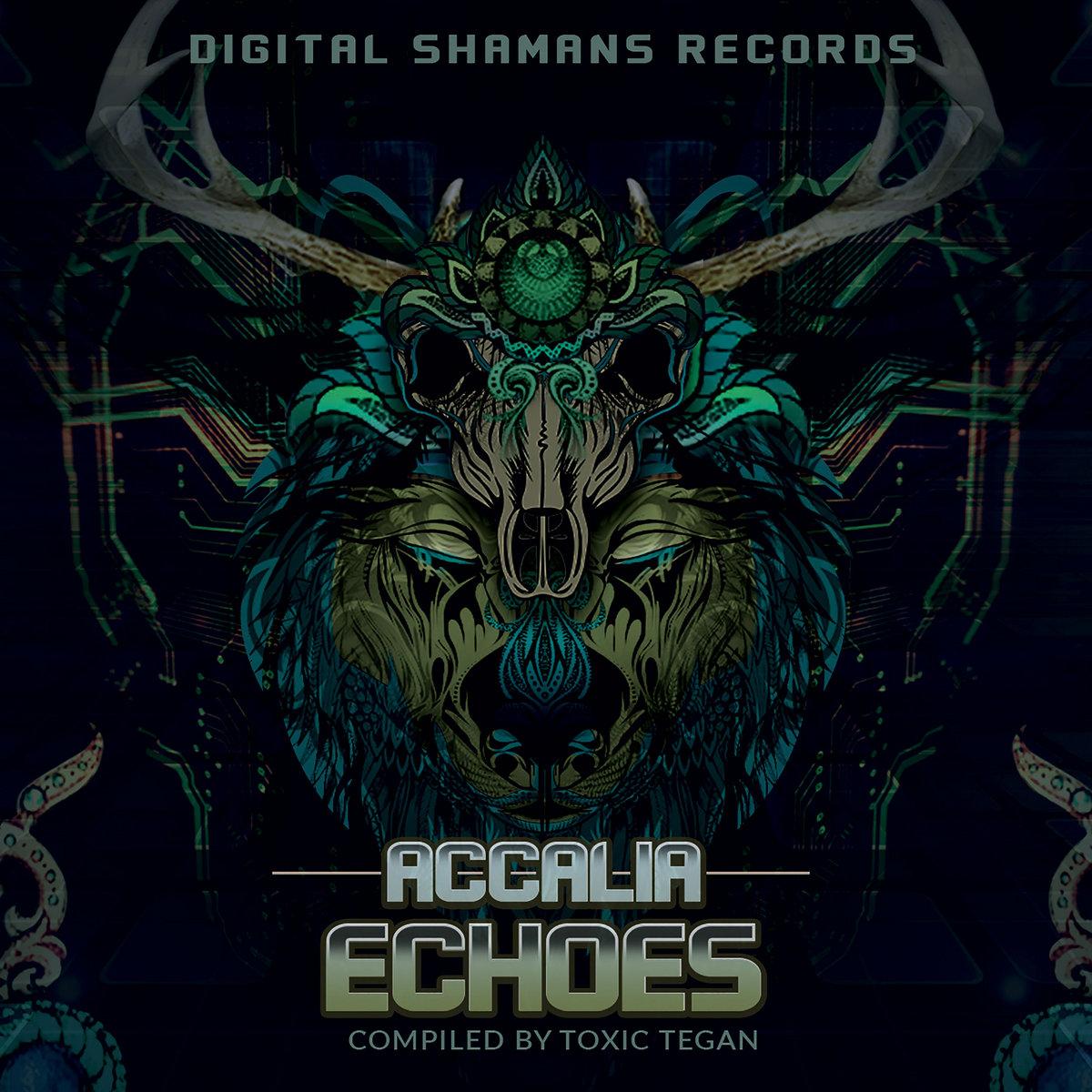 Ghost Train   Digital Shamans Records